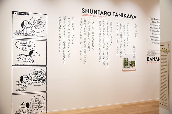 160421hanazawa_26