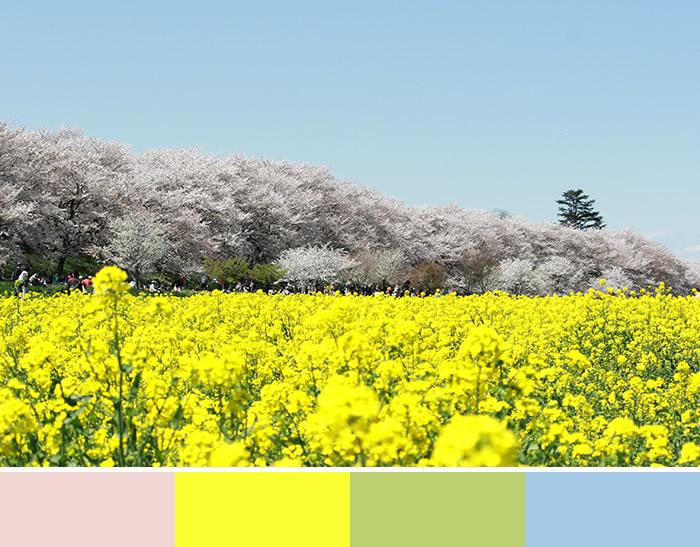 春色を選びたいとき