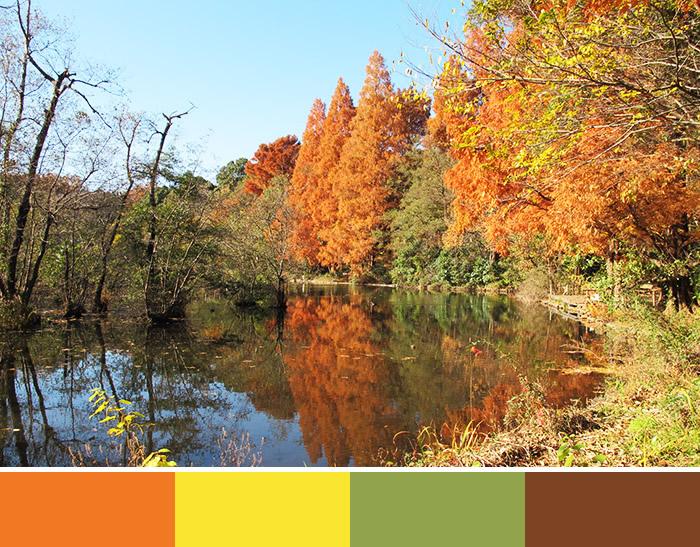 秋色を選びたいとき