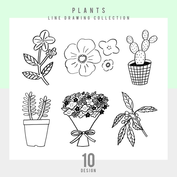 【シンプル】PLANTS 10点セット