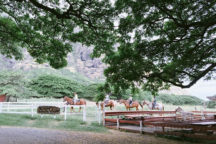 ハワイ hawaii クアロア・ランチ 乗馬