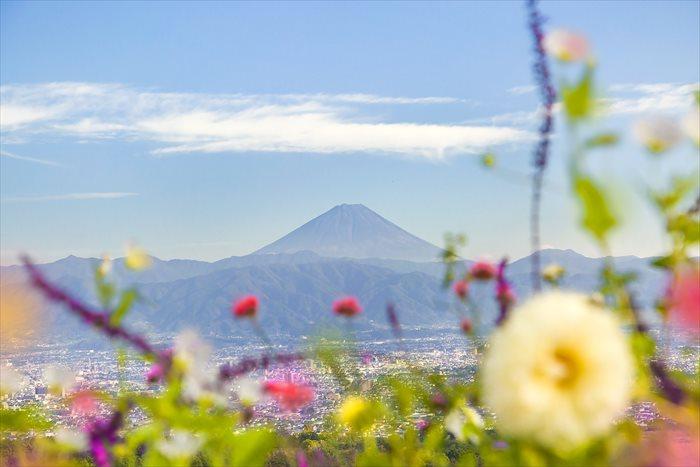 撮影:今井さん 508673232,YuriF