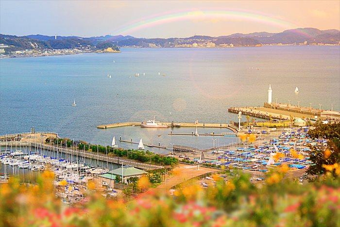 撮影:今井さん 162494573, YuriF