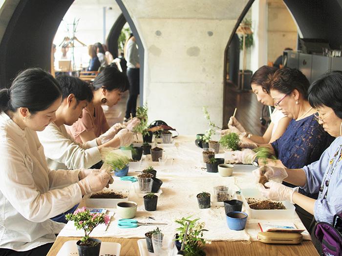 ルミネ大宮 BONSAI WEEK ワークショップ 榊麻美植物研究所