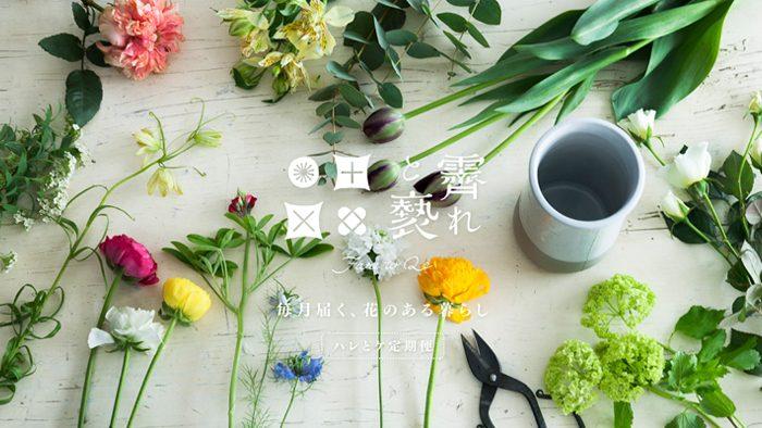 月に1回、季節の花+花の新聞が届く「霽れと褻(ハレとケ)」の定期便