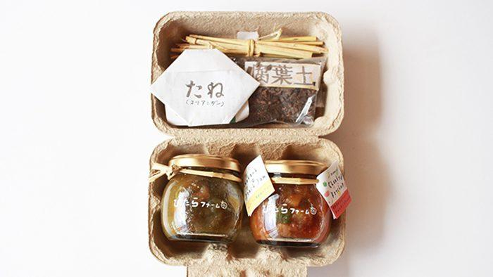 ギフトの箱でミニ菜園がはじめられる!<br />身体にも地球にも優しい、ぴたらファームecoギフト