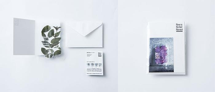 gift_21