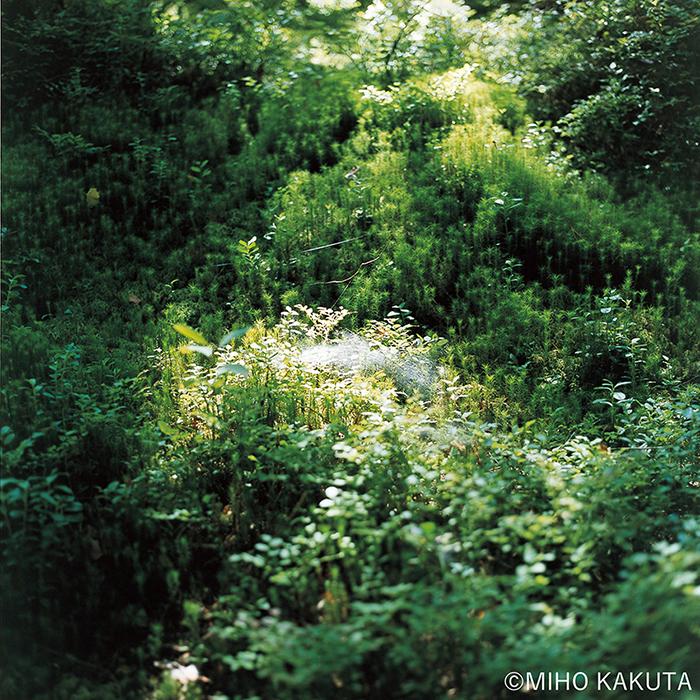 かくたみほ写真集『光の粒子』