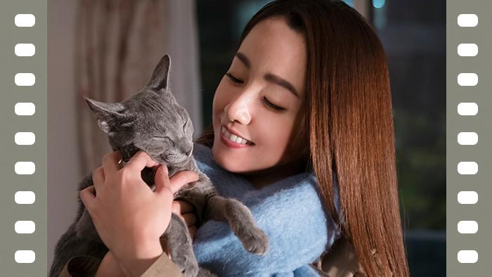 映画『猫は抱くもの』犬童一心監督インタビュー