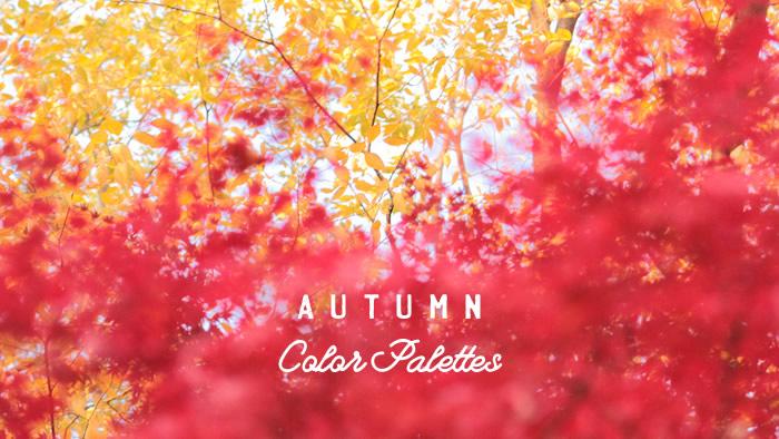 配色アイデアに使える!四季の写真でつくる秋のカラーパレット10選
