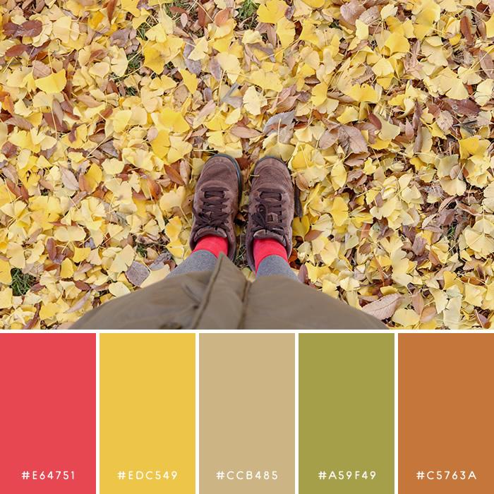 haconiwa Autumn Color 01