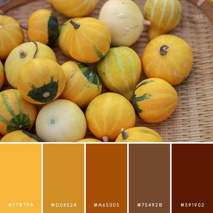 haconiwa Autumn Color 02