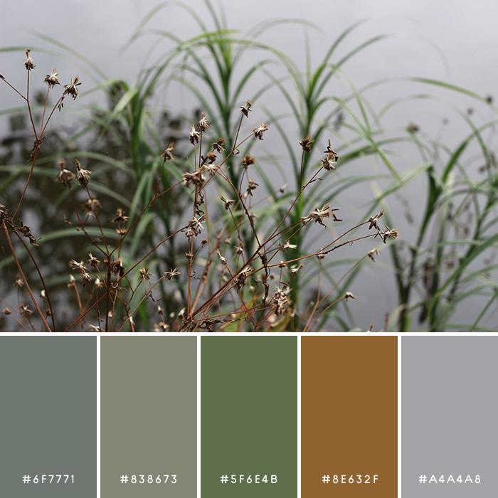 haconiwa Autumn Color 03