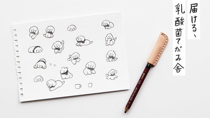 「届ける、乳酸菌てがみ舎」キャンペーン便せんイラスト制作の裏側。てらおかなつみさんがシンプルな画材で描く、唯一無二の子犬たち