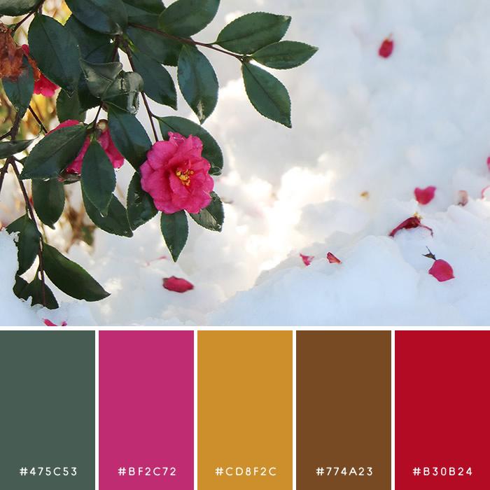 haconiwa Winter Color 05