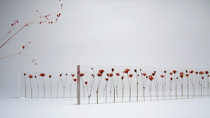 本物の花がならぶ、美しいアクリル定規「f,l,o,w,e,r」
