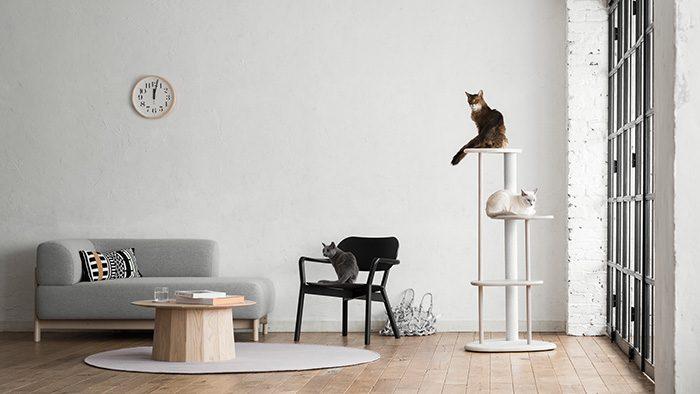 猫の健康と美しさをつくる。カリモク×RINNの新ブランド「KARIMOKU CAT」がデビュー