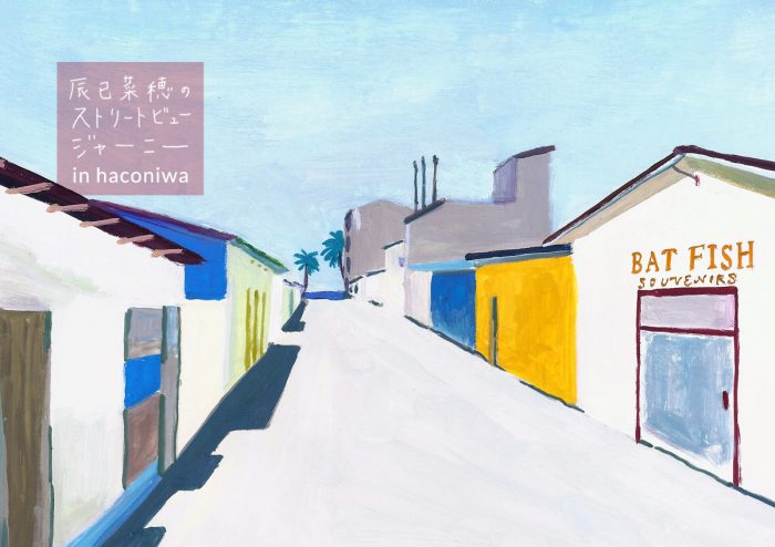 辰巳菜穂のストリートビュージャーニー in haconiwa<br />〜リアルローカルな空気感 モルディブ・マアフシ島〜