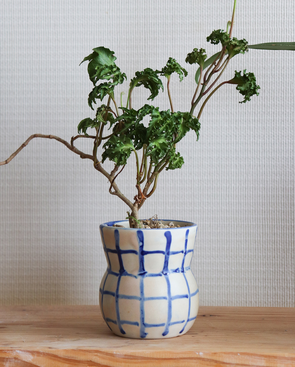 Pot. Owl(グリッド)
