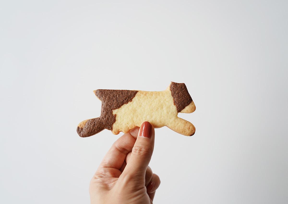 阿蘇の草原とぶ牛クッキー