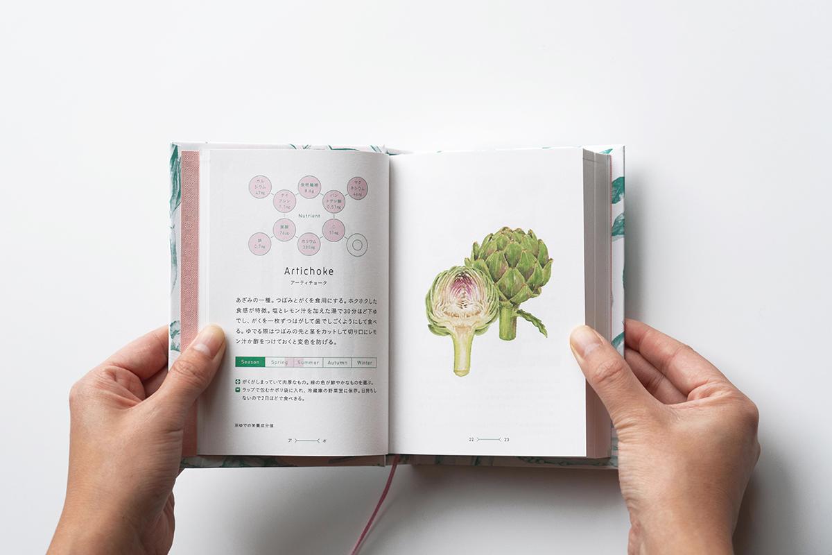 菜の辞典アーティチョーク