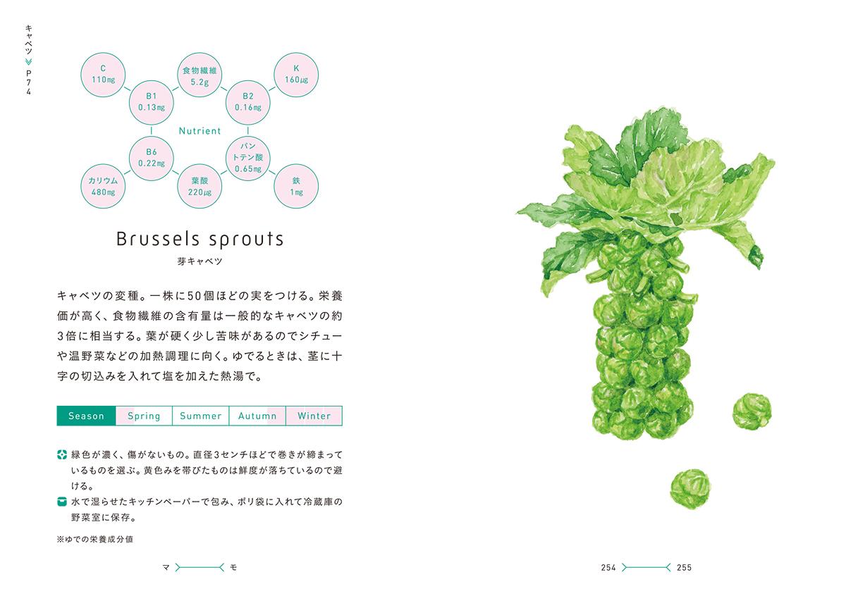 菜の辞典芽キャベツ