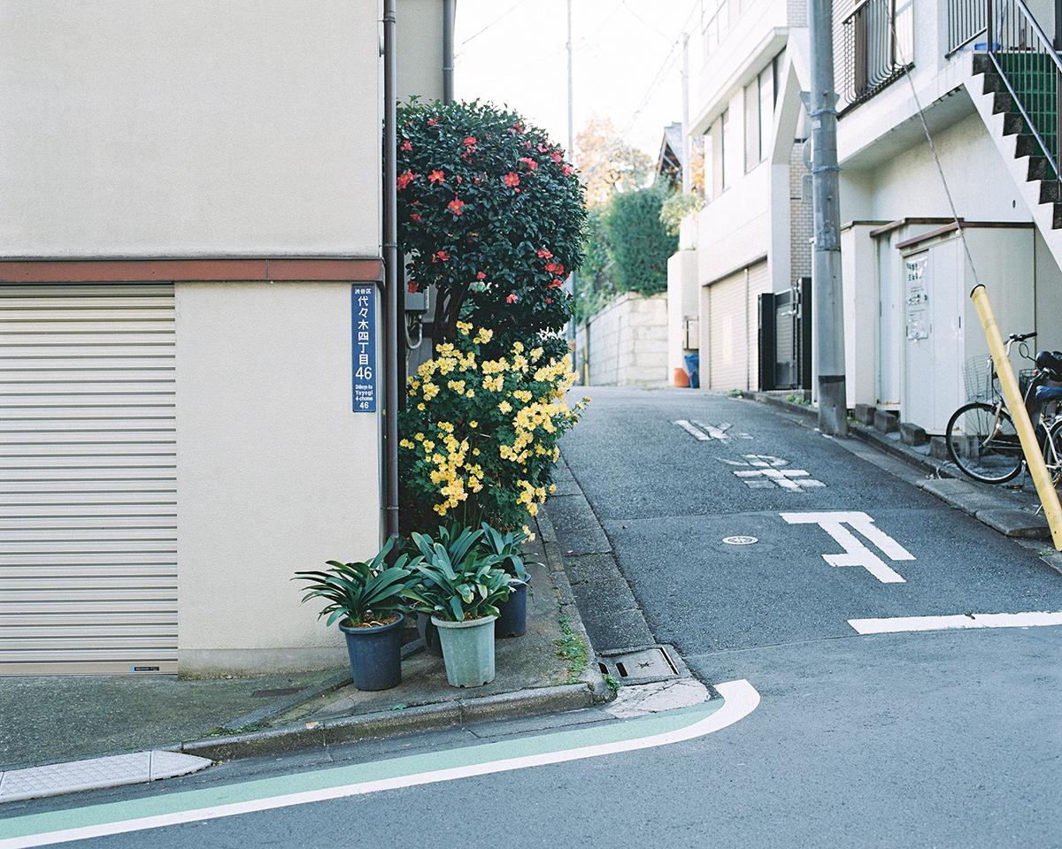 Kensuke Hosoya