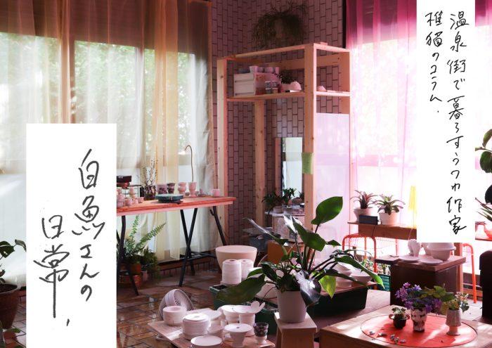 温泉街で暮らすうつわ作家 椎猫のコラム「白魚さんの日常」vol.3