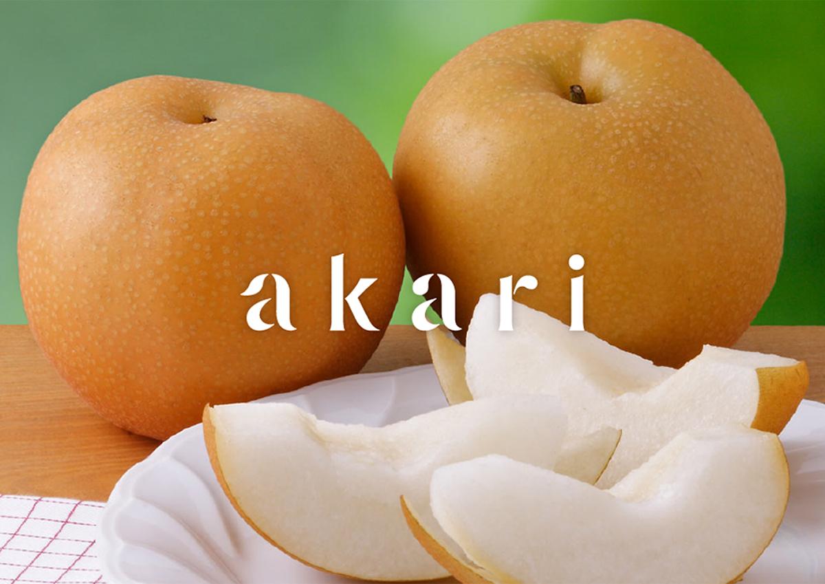 群馬県明和町の梨を全国へ届けたい。厳選された梨のブランド「akari」が気になる!